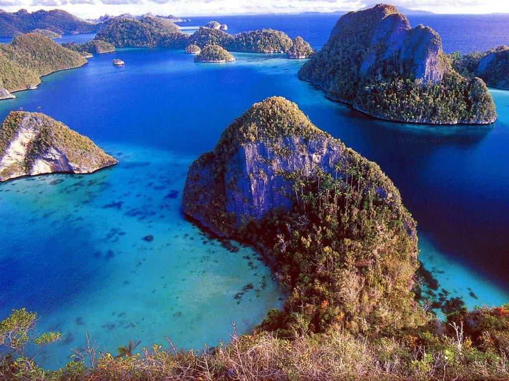 Raja Ampat Islands Junglekey In Image